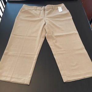 🌸 3/$11 🌸 NWT daisy Fuentes cropped pants